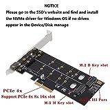QNINE Dual M.2 PCIe Adapter, M.2 NVME SSD M Key
