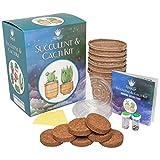 Succulent & Cacti Garden Complete Starter Growing Kit | DIY Cactus & Succulent Seeds, Instruction Manual, 6 Drainage Saucers, 6 Biodegradable Peat Pots & 6 Soil Wafer Disks