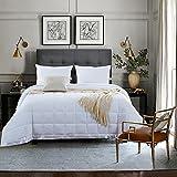 NEWLAKE Lightweight White Down Alternative Quilted Comforter Medium Warmth Duvet,Full/Queen Size