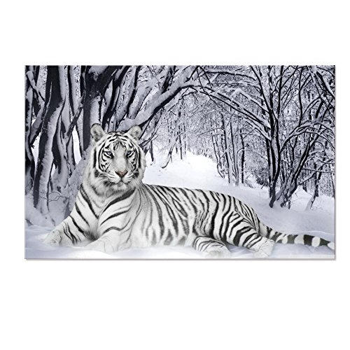 Black and White Tiger Aminal Canvas Wall Art,Elegant Tiger rest on Snow Landscape Canvas
