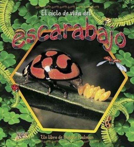 Read Online El Ciclo de Vida del Escarabajo (Ciclos de Vida) (Spanish Edition) pdf epub
