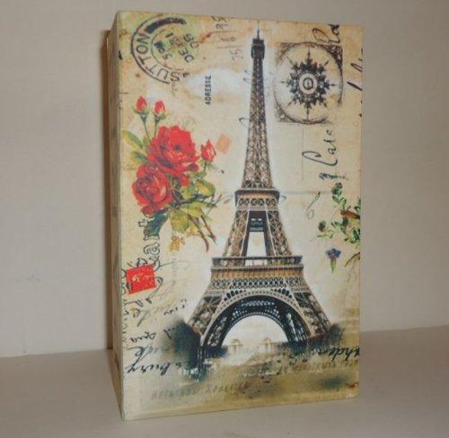 091| CAJA FUERTE DE CAUDALES CAMUFLAJE FORMA DE LIBRO 18X11 PARIS