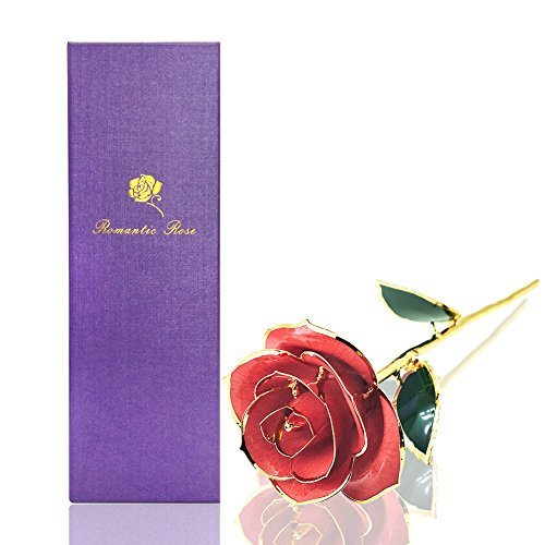econoLED Long Stem Dipped 24k Gold Trim Red Rose in Gift Box,valentines Gifts for Couples, Cute Valentines Day Gift Ideas, Good Couple Gifts for Valentines, Romantic Anniversary Gifts (Good Ideas For Couples)