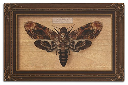 Death Wood Sign - Death's Head Moth (10x15 Wood Wall Sign, Wall Decor Ready to Hang)