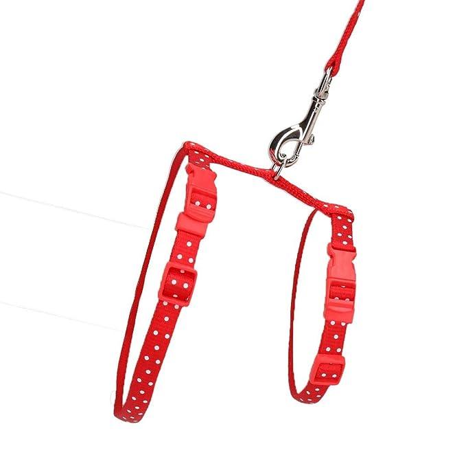 AB Tools Rojo Pequeno Animal Poka Dot Arnes & Lead (cuello14-20 ...