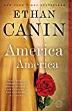 img - for America America: A Novel book / textbook / text book