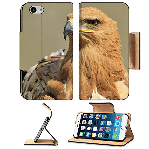 Liili Premium Apple iPhone 6 iPhone 6S Flip Pu Wallet Case IMAGE ID: 22291231 Tawny Eagle Wild Bird background from Africa Fantastic beauty through color and pose (Tawny Eagle)