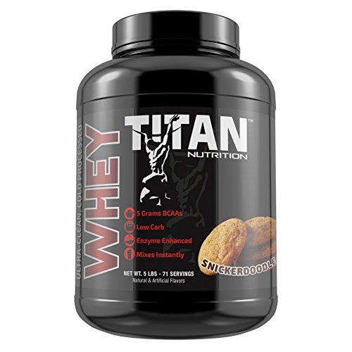 Cheap Titan Whey Premium Whey Protein (Snickerdoodle, 5 lb)
