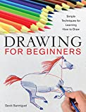 Drawing for Beginners, David Sanmiguel, 1454911166