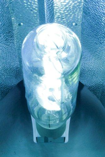 iPower 1000 Watt Metal Halide MH Grow Light Bulb Lamp, High PAR Enhanced Blue and Violet Spectrums CCT 6000K