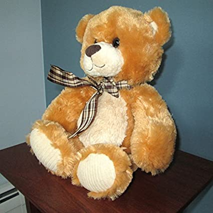 Amazon Com Musical Plush Stuffed Animal Teddy Bear With Music Box