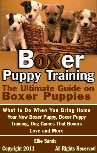Boxer Puppy Training The Ultimate Guide On Boxer Puppies What To