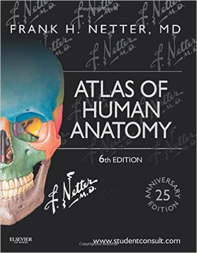 Atlas of Human Anatomy: Including Student Consult Interactive Ancillaries and Guides, 6e (Netter Basic Science) by Frank H. Netter MD 6 edition (Textbook ONLY, Paperback)