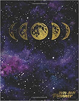 Funny Holiday Calendar 2021 2020 2021 Planner: Golden Phases Of The Moon 2 Year Weekly and
