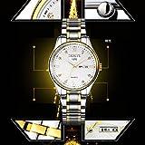 Dolland Business Casual Watch Fashion Classic Watch Quartz Watch Elegant Luxury Collection Watch