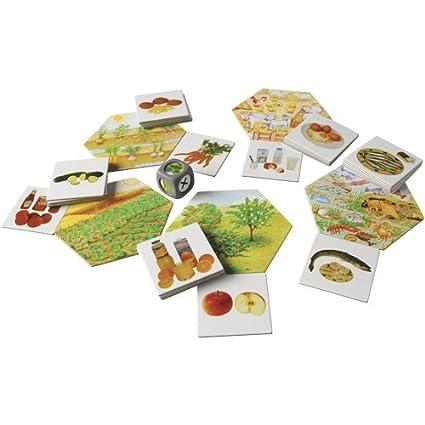Amazon.com: ¿Dónde Alimentos viene? 35 Pc. Juego de cartas ...