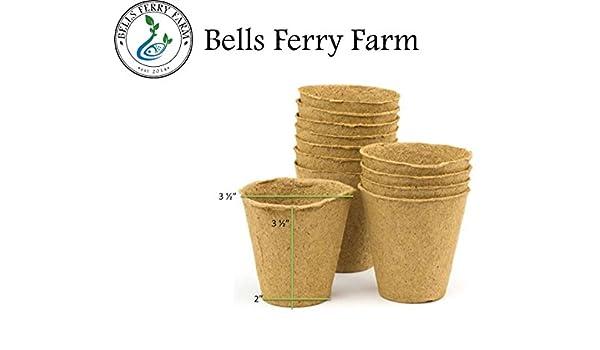 Orgánico semillas, madera de semillas bandejas de macetas o Ormi Certificado 100% ecológico y Biodegradable - Evita que el trasplante Shock, ...