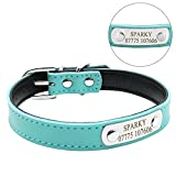 Didog Adjustable Leather Padded Custom Dog Collar with Engraved Nameplate - Fit Cats and Small Medium Dogs - Blue - S Size