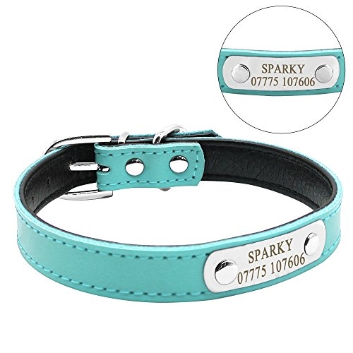 (Didog Adjustable Leather Padded Custom Dog Collar with Engraved Nameplate,Fit Cats and Small Medium Dogs,Blue,S Size)