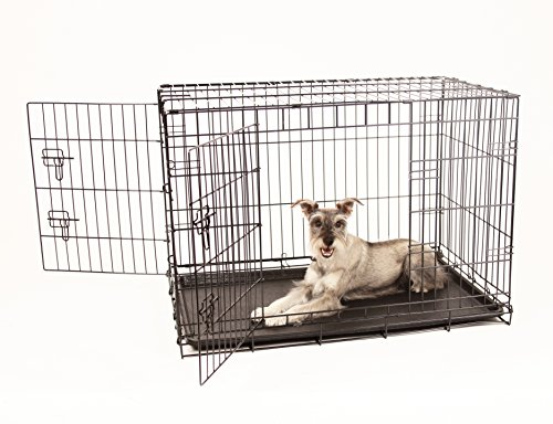Carlson Secure and Compact Double Door Metal Dog Crate, Intermediate with Divider Panel