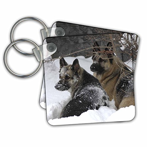 3dRose German Shepherds Best Friends Key Chains, Set of 2 (kc_51013_1)