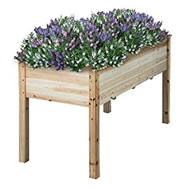 YAHEETECH Wooden Raised/Elevated Garden Bed Planter Box Kit for Vegetable/Flower/Herb Outdoor Gardening Natural Wood, 49 x 23.2 x 30.1in 1 Natural solid wood: This natural raised garden bed is made of non-paint, harmless 100% solid wood, which is known for its strength and dimensional stability as well as its natural resistance with a pleasing wooden smell. It is normal that there are wood knots on the surface. That's a natural phenomenon when the wood is growing. Single piece of side plate: Comparing to other planting beds that have several small pieces of wooden plates at the side, our planting raised bed has a piece of complete side plate at each side of the garden bed. This single-piece design makes the whole structure very stable, and the installation very easy. The side plates are fixed firmly without leakage of soil. Backache-friendly design: Given its 76.5cm/30.1'' height, people with backache/knee pain can easily manage the plants without bending down and taking the risk of pain. The thick solid wood boards are sanded well to prevent any undesired injury caused by wood splinters.