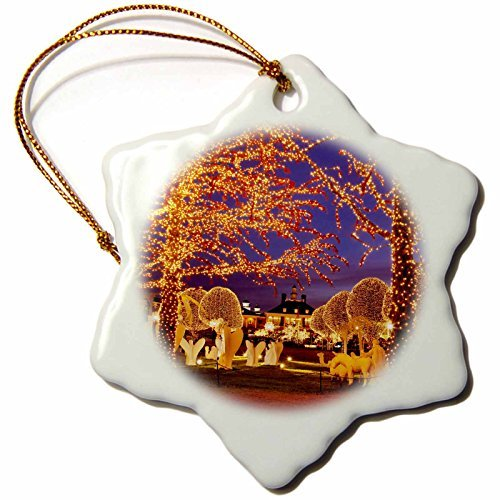 Ornaments to Paint 146534_1 Christmas, Opryland Hotel, Nashville, Tennessee Usa-Us43 Bjn0047-Brian Jannsen-Snowflake Ornament, 3-Inch, Porcelain]()