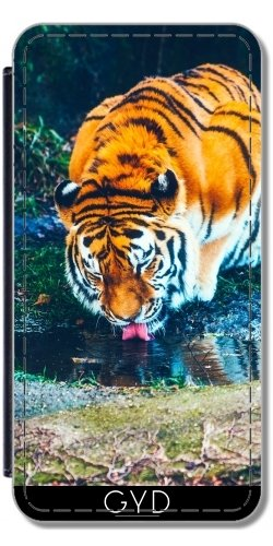 Leder Flip Case Tasche Hülle für Apple Iphone 7 Plus / 8 Plus - Tiger Wildkatze Löwe Natur by WonderfulDreamPicture