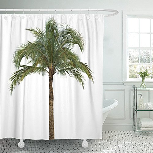 Emvency Shower Curtain 72x78 Inches Green Jungle Coconut Palm Tree White Without Fruit Leaf Foliage Color Stem Tall Machine Washable