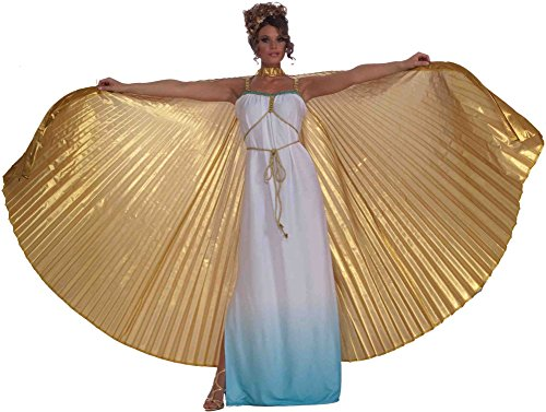 Wings Costume Accessory - 8