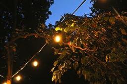 String Lights Tj Maxx : Amazon.com : Outdoor String Lights by Deneve - Heavy Duty Hanging Market Patio Cafe Pergola ...