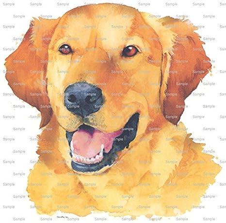 Super 8 Round Golden Retriever Painting Dog Birthday Edible Cake Funny Birthday Cards Online Alyptdamsfinfo