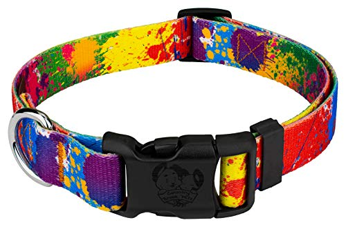 Country Brook Petz | Paint Splatter Deluxe Dog Collar - Groovy Collection with 5 Far Out Designs (1 Inch, Medium)