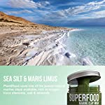 VEGAN Dead Sea Mud Mask with Superfoods - Marine Clay Face Mask - Blackhead Remover - Cleanse and Detoxify the Skin - Clay Mask for Face - Natural Face Mask - Face Mask for Acne
