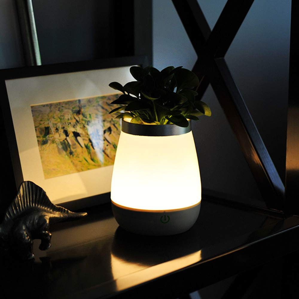 Basde LED Night Light, Vase Table Lamp LED Rechargeable Night Light with Sensor Desk Bedsies Lamp Touch Control for Baby Room Bedroom Living Room and Office Decorations by Basde (Image #4)