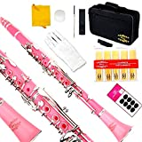 Glory B Flat Clarinet with Second Barrel, 11reeds,8 Pads cushions,case,carekit and more -Pink with silver keys