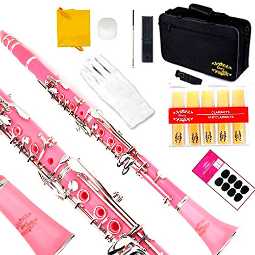 Glory B Flat Clarinet with Second Barrel, 11reeds,8 Pads Cushions,case,carekit and More -Pink with Silver Keys by GLORY