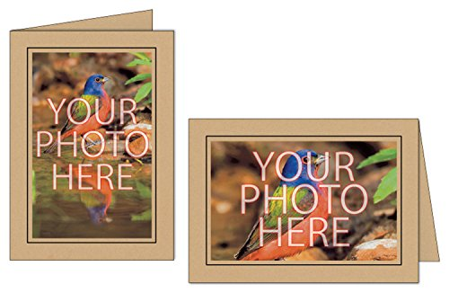 Photographer's Edge, Photo Insert Card, Ginger with Black Border, Set of 10 for 4x6 Photos