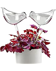 KiKiHeim Plant Waterer Self Watering Bulbs, Hand Blown Clear Glass Plant Water Globes for Indoor & Outdoor, 2 Birds