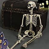 """THEE Scary Skull Bone Party Human Skeleton Anatomical Model Halloween Decoration Height 90cm/35"""""""