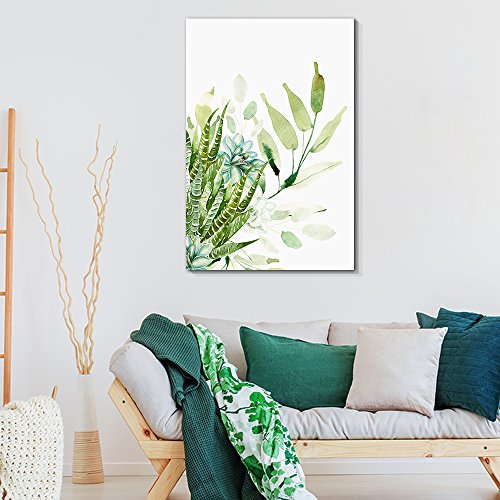 Succulent Plants Series Watercolor Style Plants on White Background