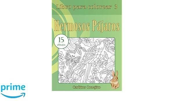 Libro para colorear Hermosos Pájaros: 15 dibujos (Volume 3) (Spanish ...