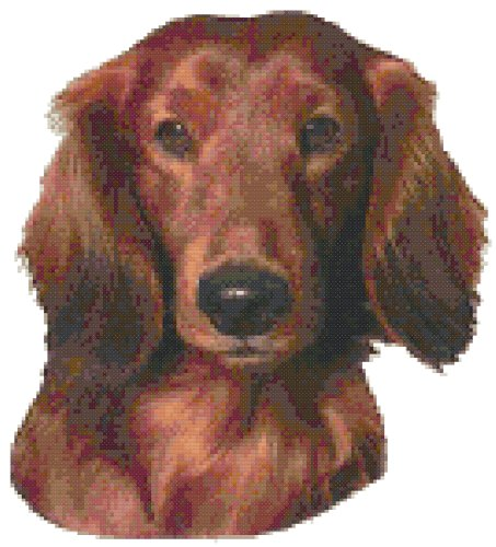 Long Haired Dachshund Dog Portrait Counted Cross Stitch Pattern