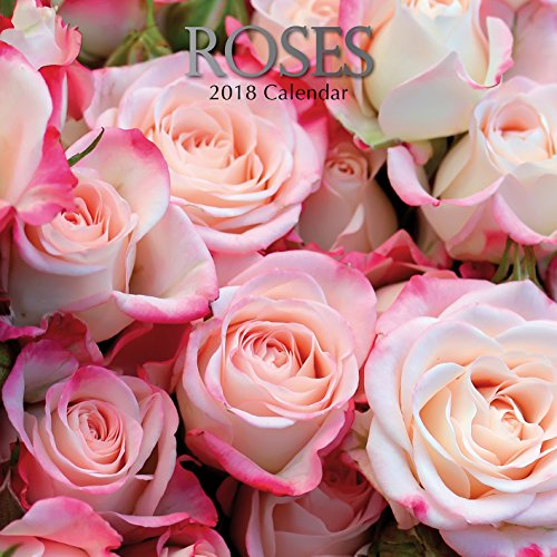 2018 Roses Calendar - 12 x 12 Wall Calendar - With 210 Calendar Stickers
