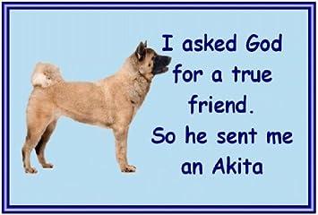 Akita sometimes Novelty dog fridge magnets available