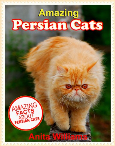 AMAZING PERSIAN CATS: A Children's Book about Persian Cats Facts, Figures and Pictures: (Dog Books For Kids)