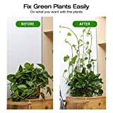 Plant Climbing Wall Fixture Clips, 100 Pcs