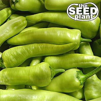 Sweet Banana Pepper Seeds - 100 SEEDS NON-GMO