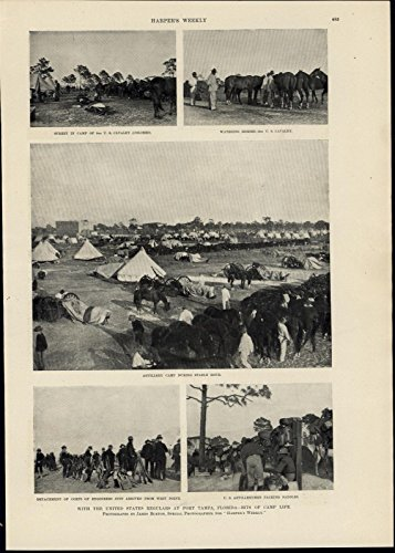 Military Camp Florida Tents Horses Soldiers Rifles 1898 great antique (Florida Tent)