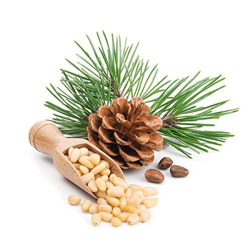 Raw Pine Nuts 1 LB (Whole and Natural) Great for Pesto, Salads, or Roasting,- By I'M A NUT